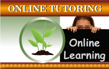 Web-Box_Online-Tutoring